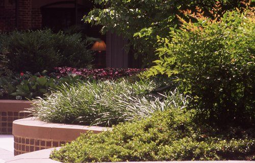Premier residential commercial landscaping company - Siena medical clinic garden city ks ...