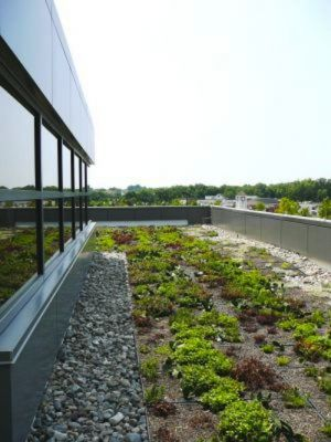 the-benefits-of-green-roofs-columbia-md