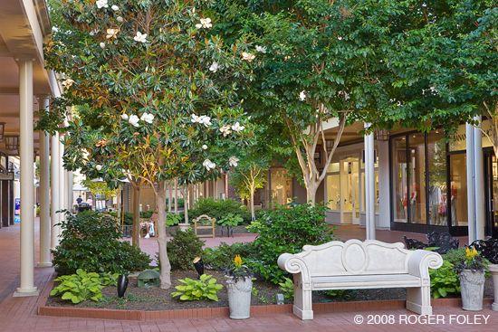 3 Top Benefits of Wintertime Commercial Landscaping in Atlanta