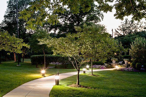 How a Landscape Lighting Designer Can Help You Design the Outdoor Lighting for Your Business