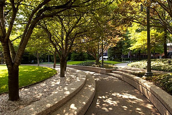 Making Powerful First Impressions with Commercial Landscape Management
