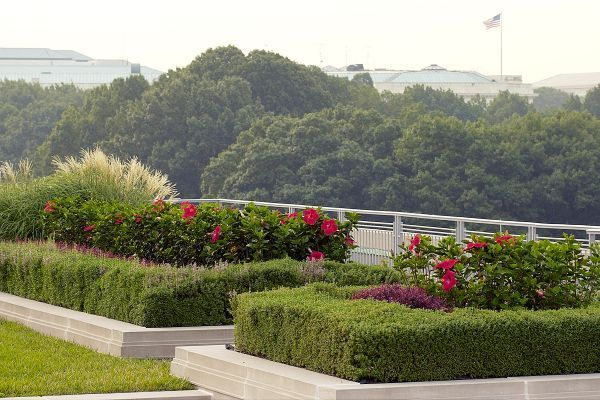3 Easy Tips for Your Green Roof