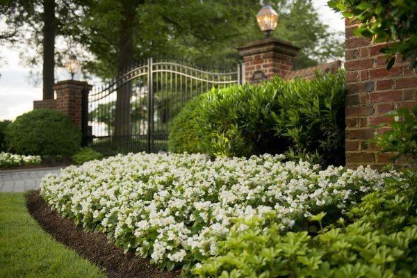 Hire a Landscape Architecture Firm and Save