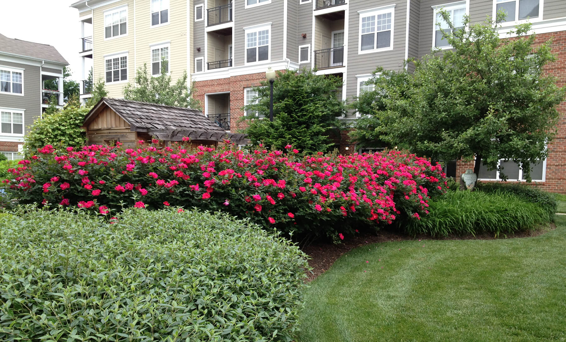 Lush landscaping outside of an apartment community